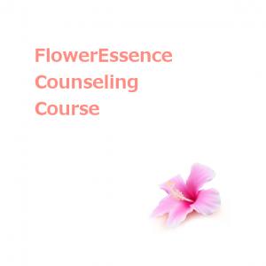 counseling_fe-basic