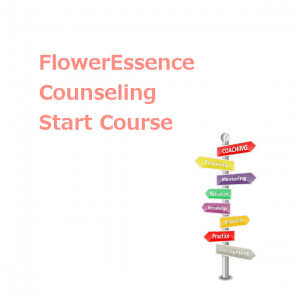 counseling_fe-start